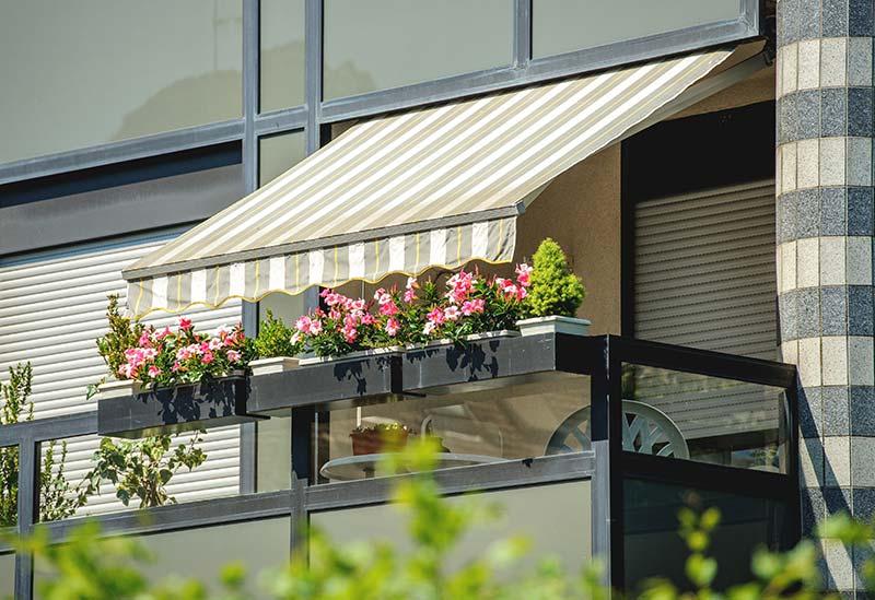 boss shade awning