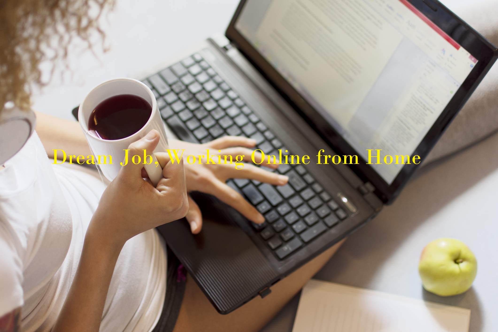 Online Earning Career