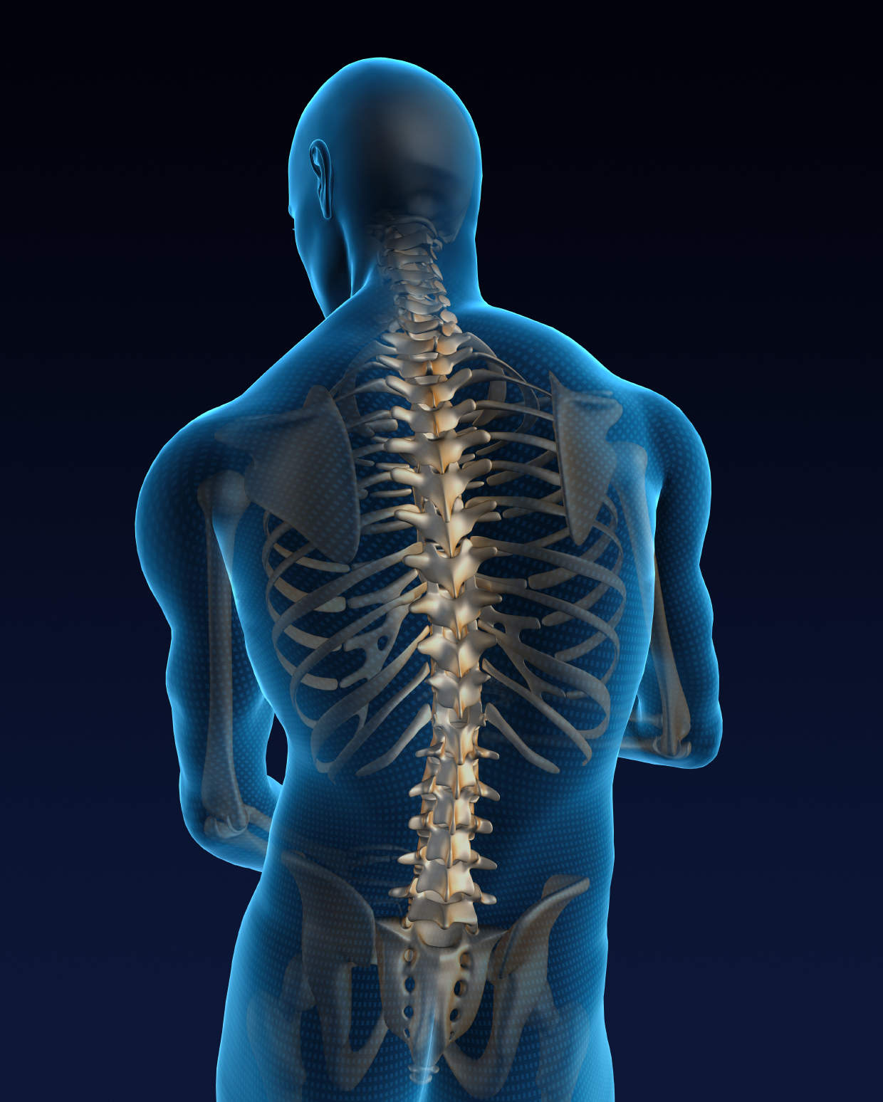 Spine Surgical Treatment, Spine Specialist