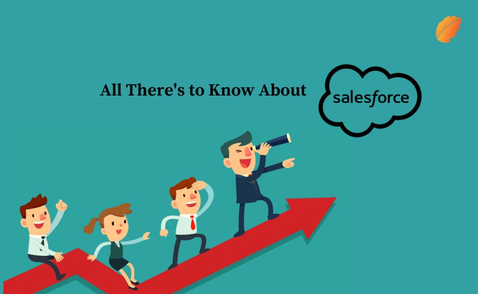 Salesforce customer application development