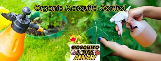 Walpole, MA Mosquito Control