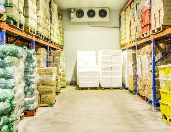 Global Cold Storage Market, Cold Storage Market, Cold Storage, Cold Storage Market Comprehensive Analysis, Cold Storage Market Comprehensive Report, Cold Storage Market Forecast, Cold Storage Market F