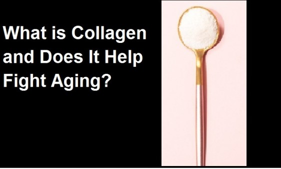 Collagen and Does It Help Fight Aging?