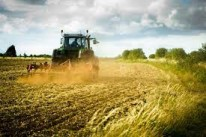 The Most Profitable Farming Business - Investment And Profit