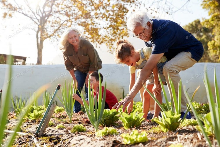 Grandparents helping