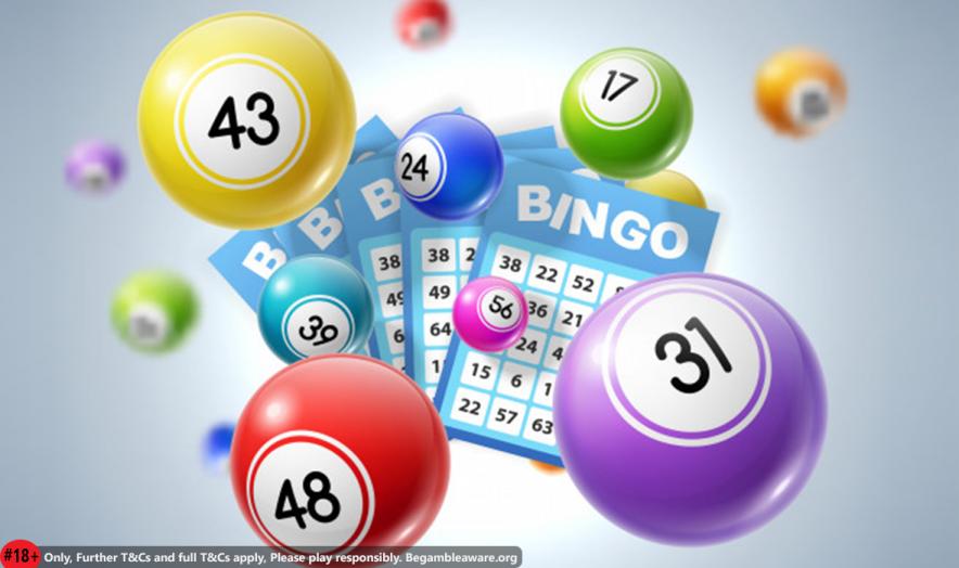 best bingo sites to win