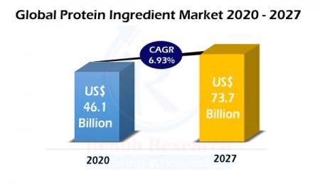 protein ingredient market